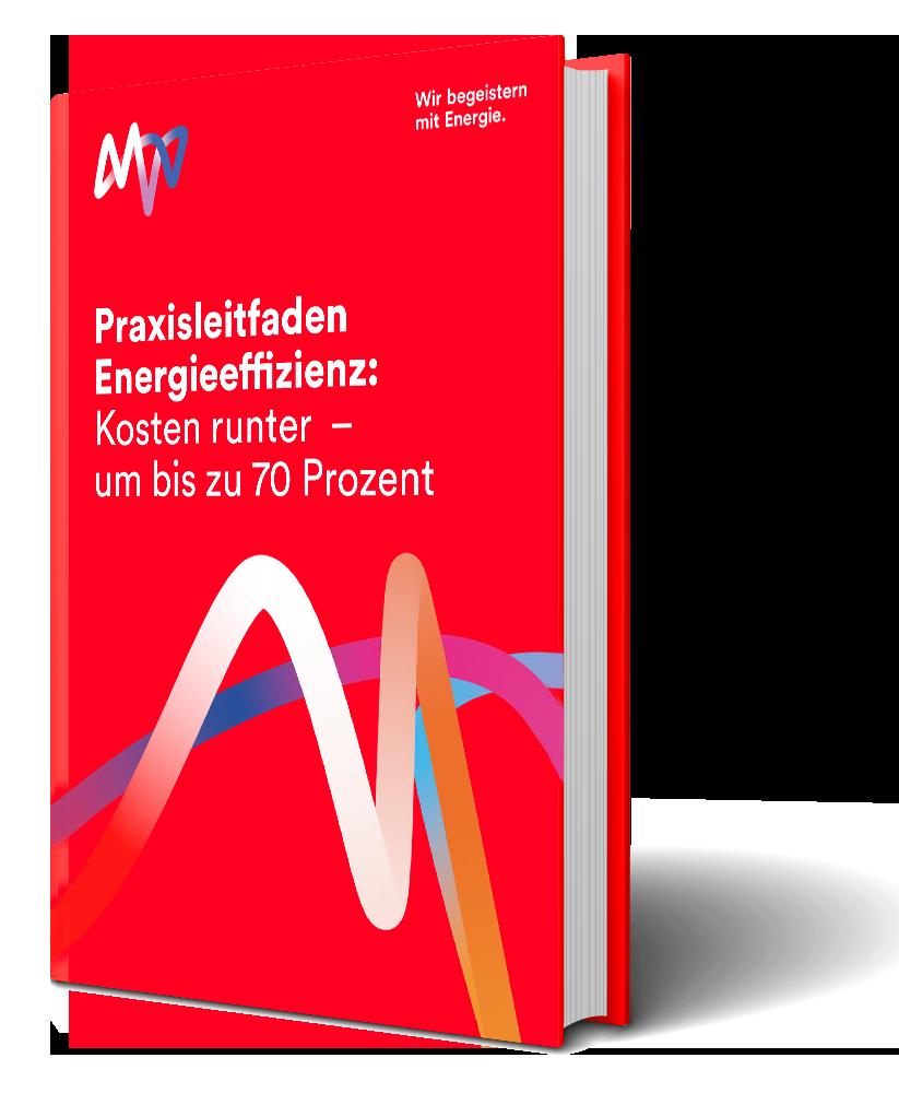 E-Book Energieeffizienz
