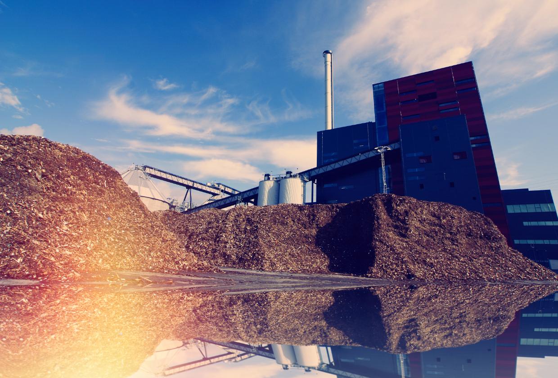 Biomasse: Nachhaltiger Brennstoff für Ihre Wärme- und Stromversorgung?