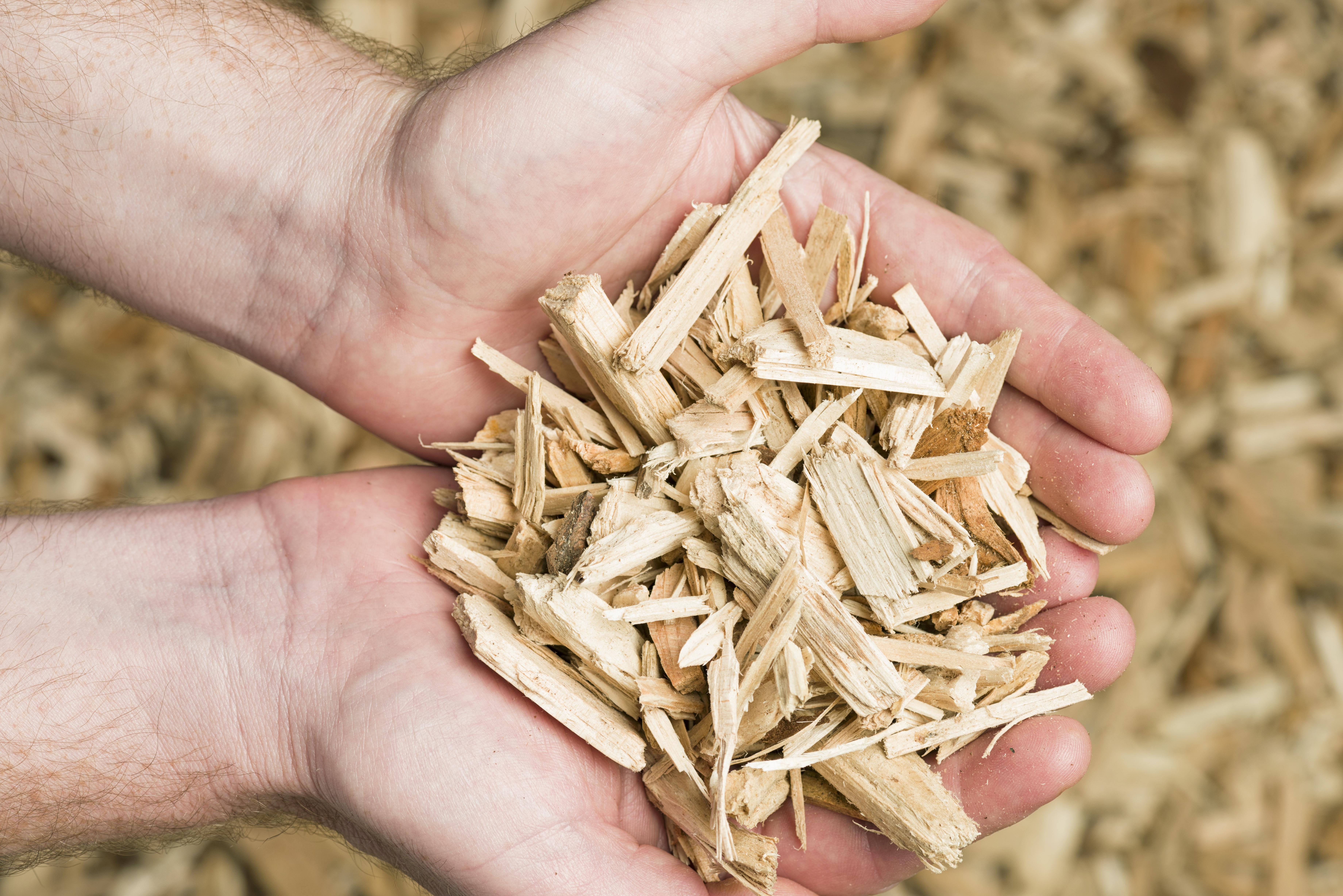 Holz Pellet_155437201